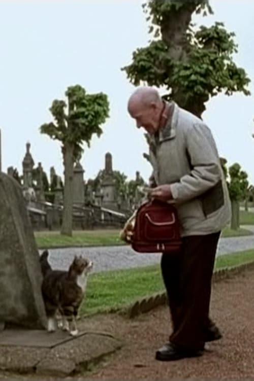 Ver Cats Online HD Español (2007)