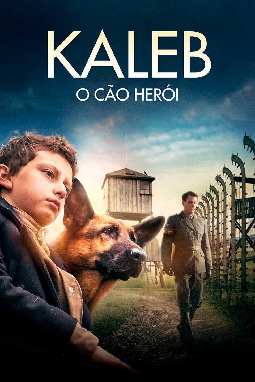 Kaleb – O Cão Herói Dublado