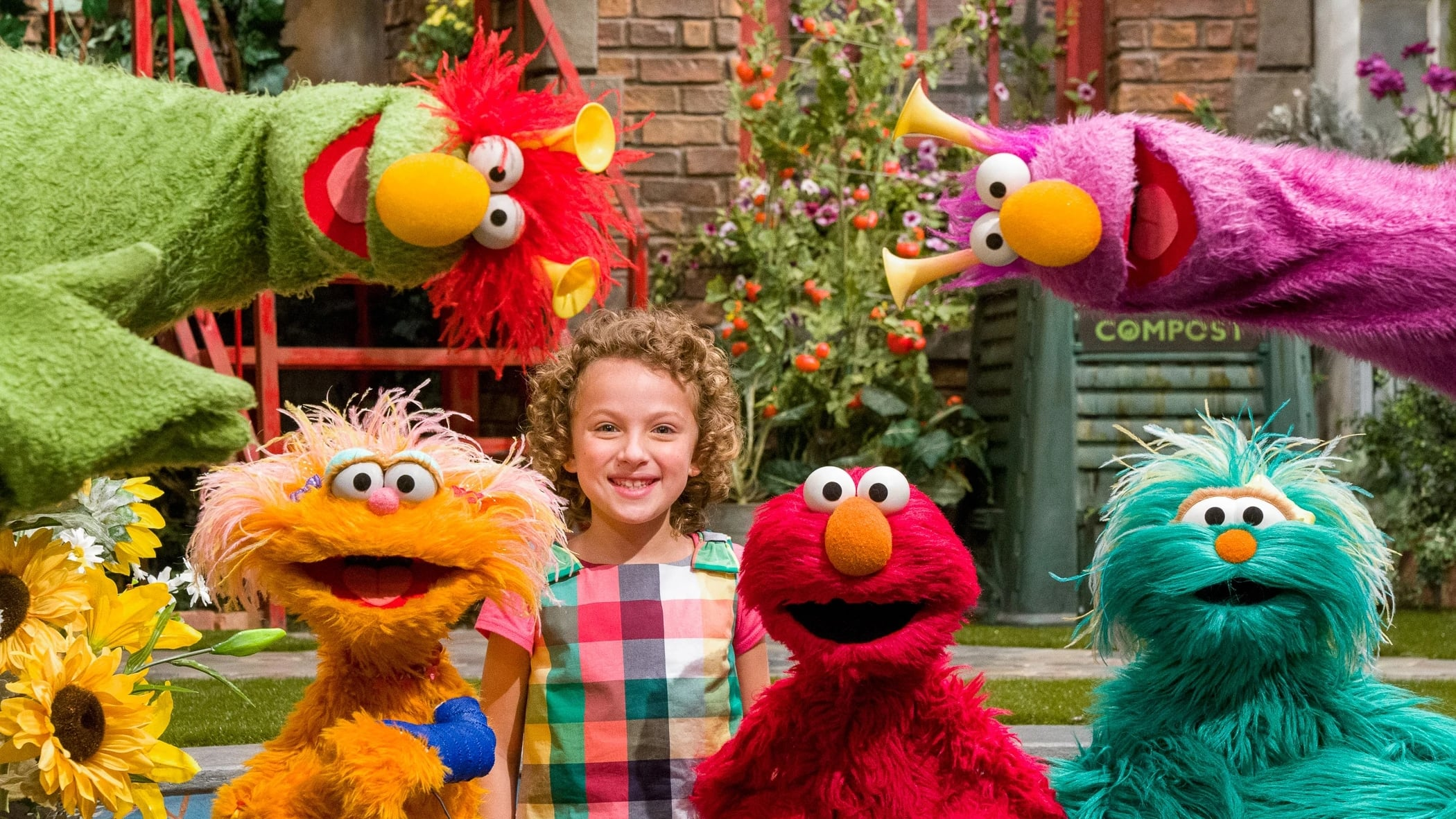 Sesame Street Season 50 :Episode 23  Zoe Breaks Her Arm