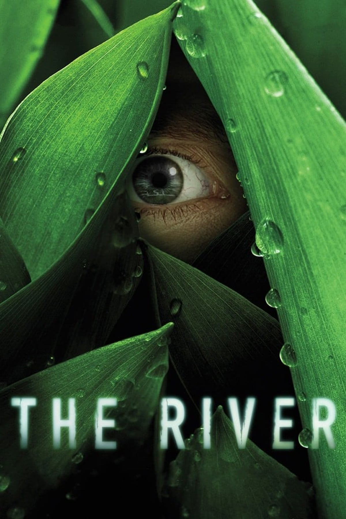 The River TV Shows About Jungle
