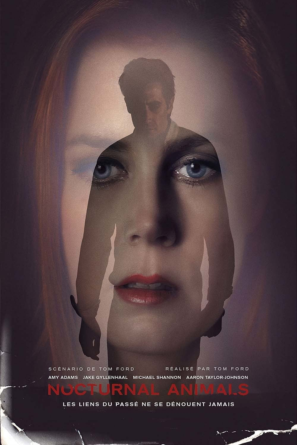 Nocturnal Animals Streaming