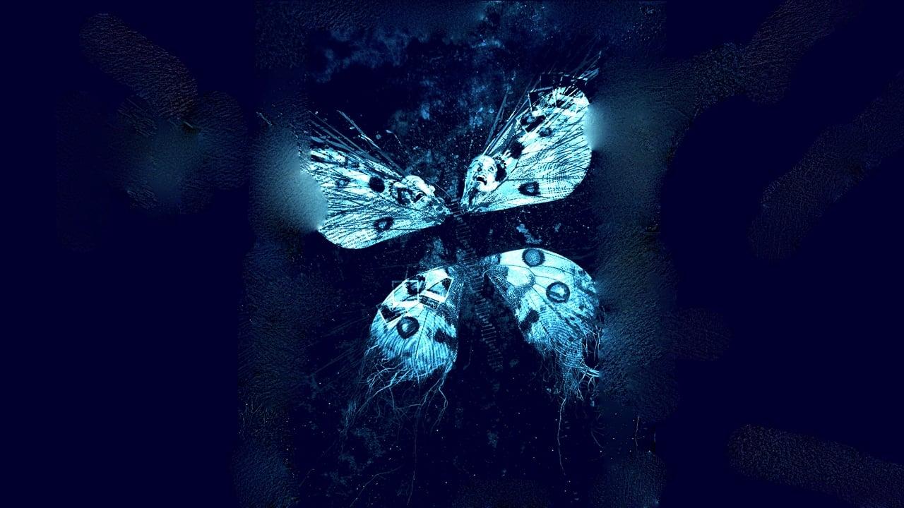 El efecto mariposa 3: Revelaciones