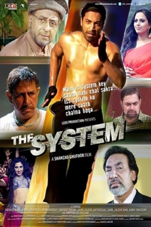 Ver The System Online HD Español (2014)