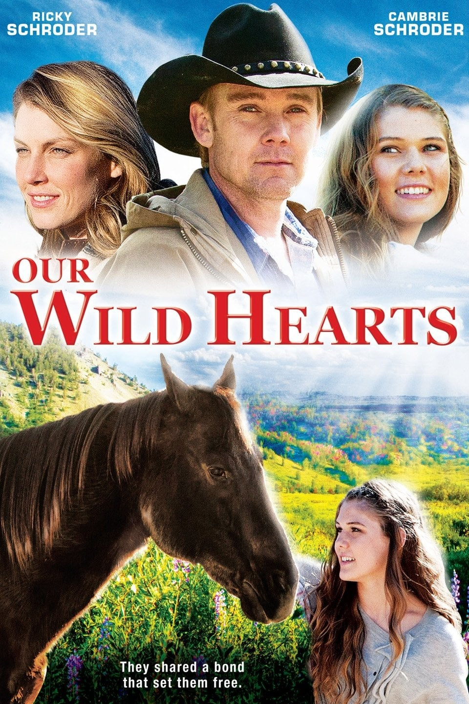 Our Wild Hearts on FREECABLE TV