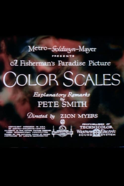 Color Scales