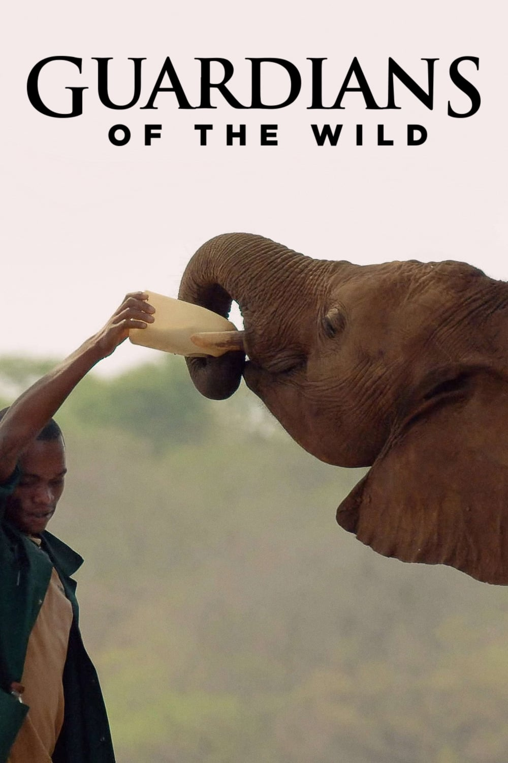 Guardians of the Wild (2018)