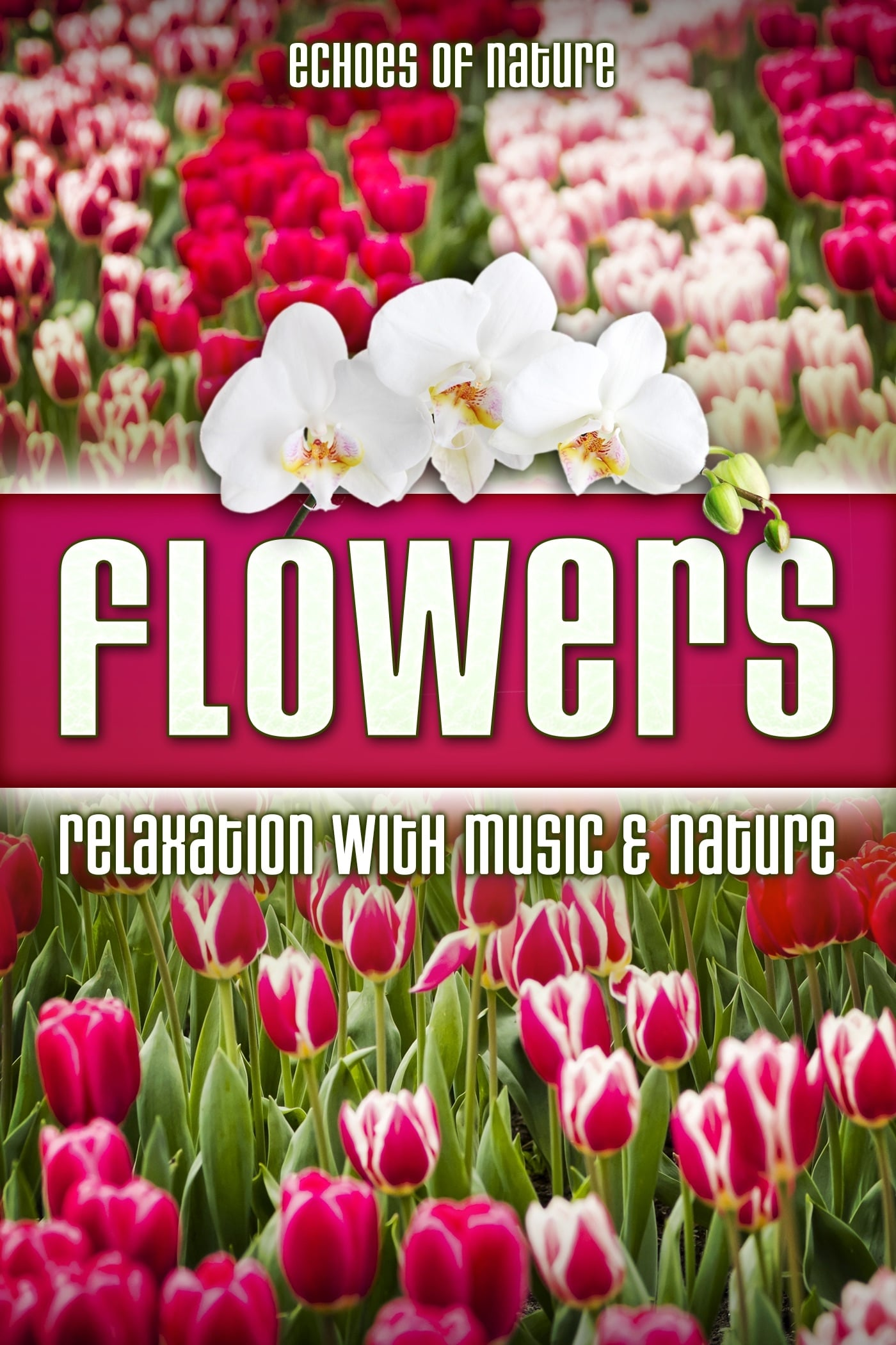 Flowers: Echoes of Nature Relaxation with Music & Nature on FREECABLE TV