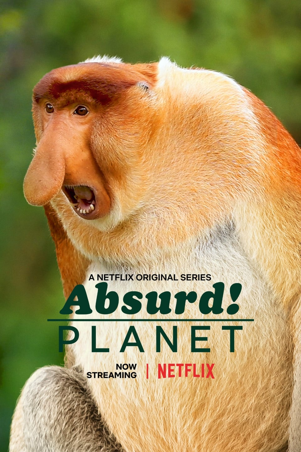 Absurd Planet TV Shows About Nature Documentary