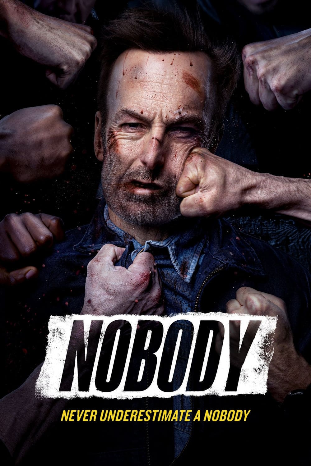 Poster and image movie Nobody
