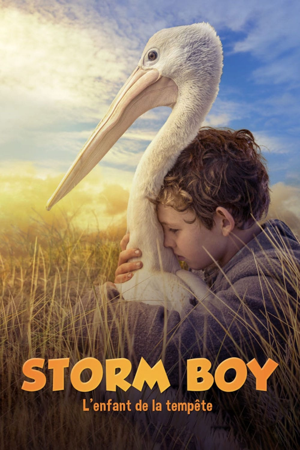 Storm Boy streaming sur zone telechargement