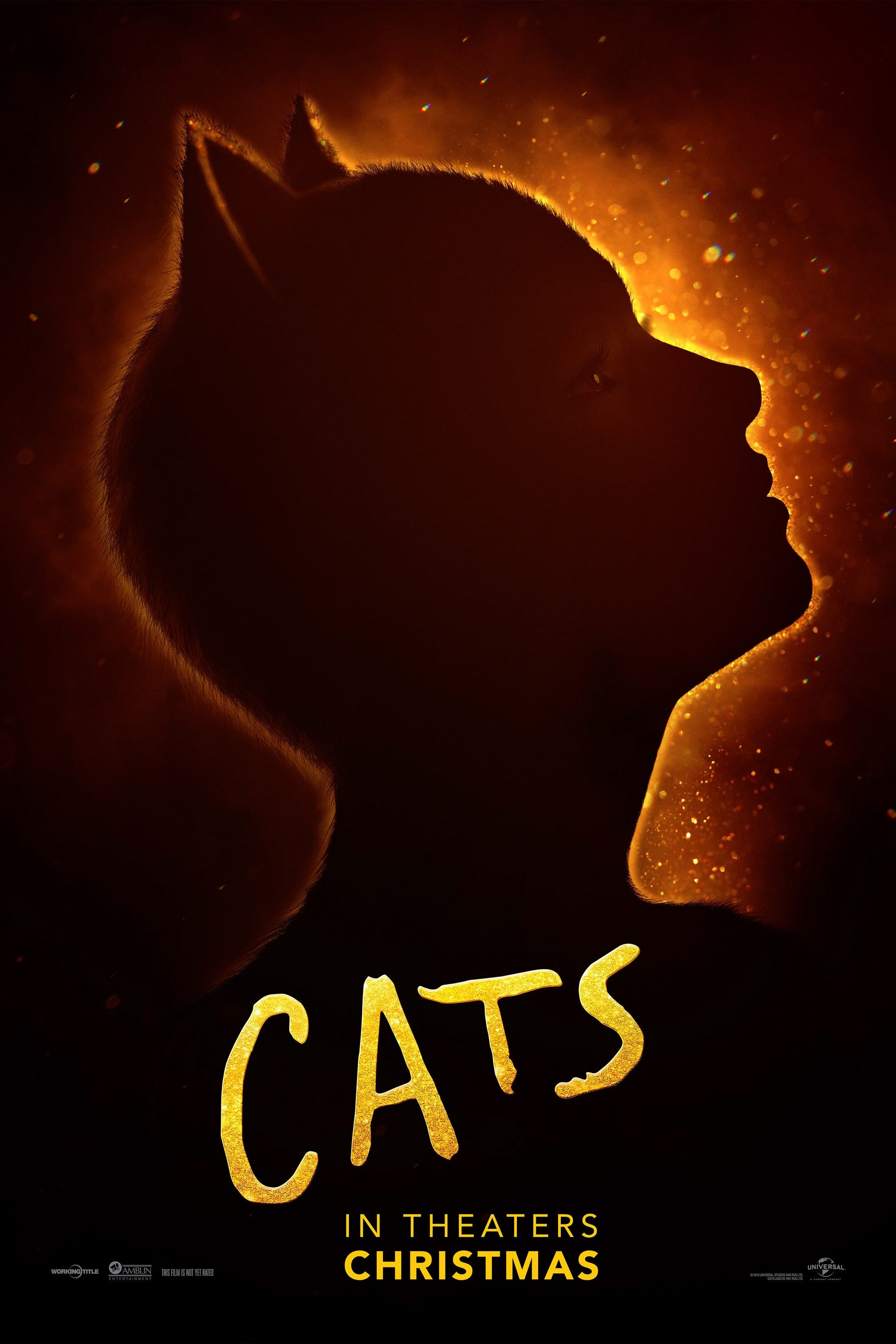 Poster and image movie Film Cats 2019