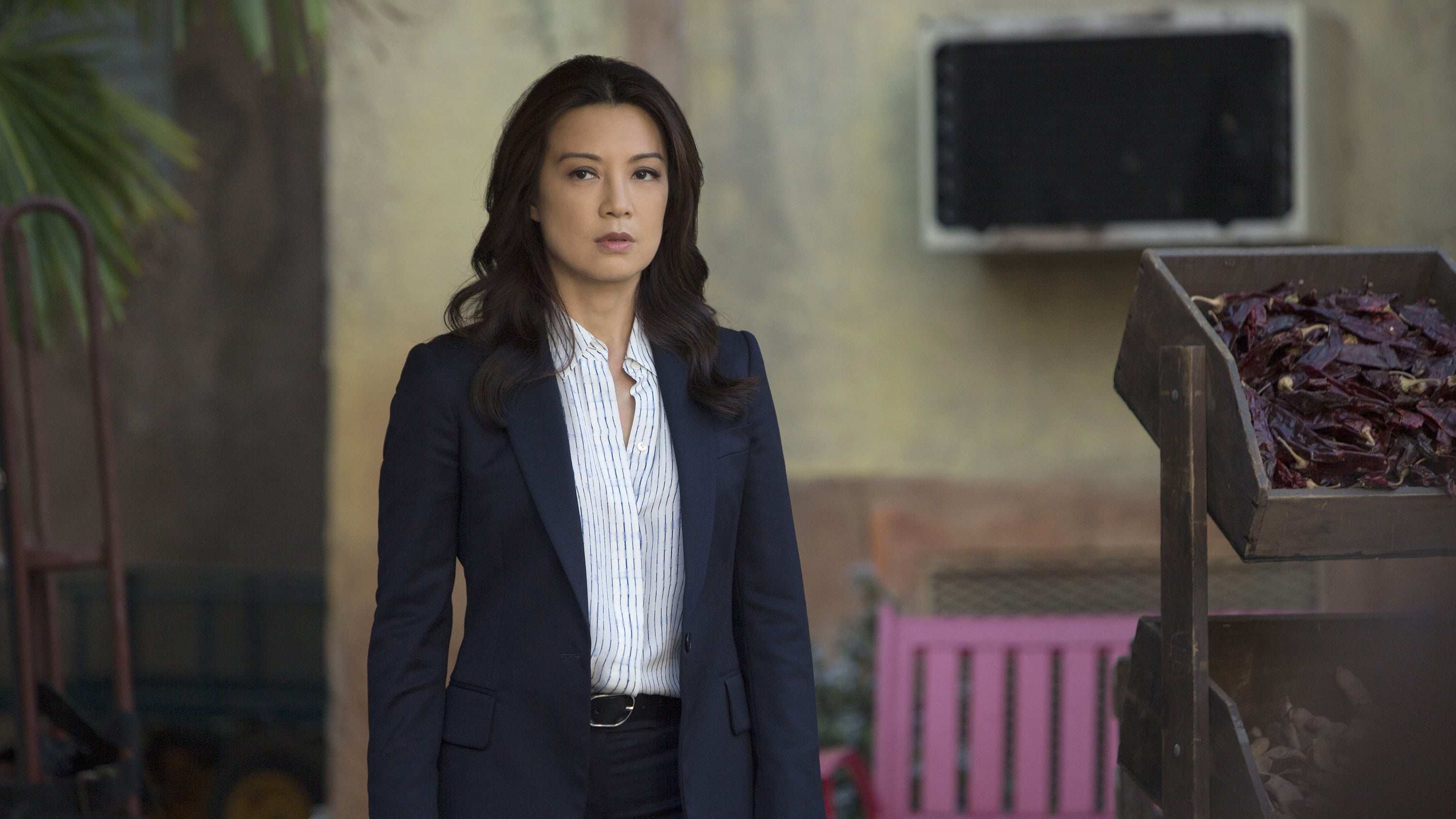 Marvel's Agents of S.H.I.E.L.D. Season 2 :Episode 17  Melinda