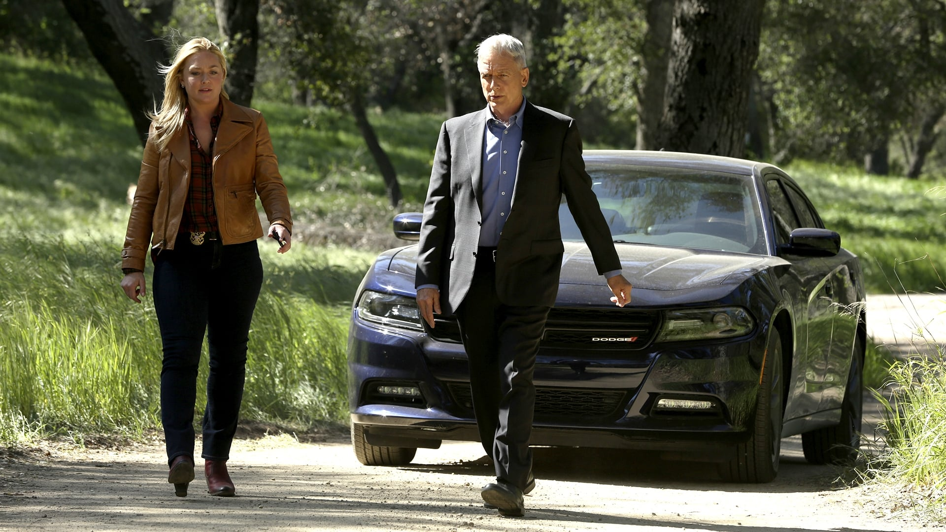 NCIS - Season 14 Episode 22 : Beastmaster
