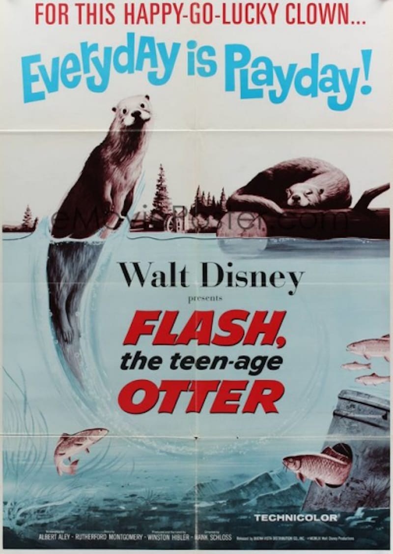 Flash, The Teenage Otter