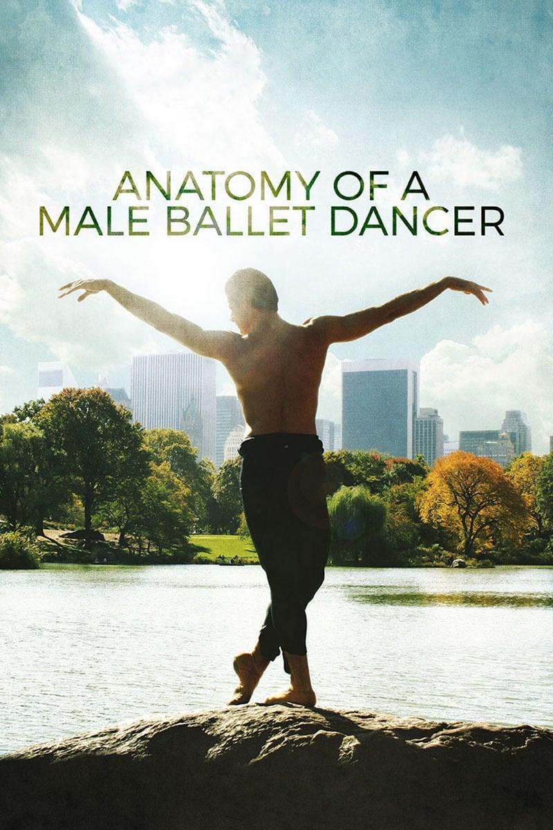 Anatomy of a Male Ballet Dancer (2017)