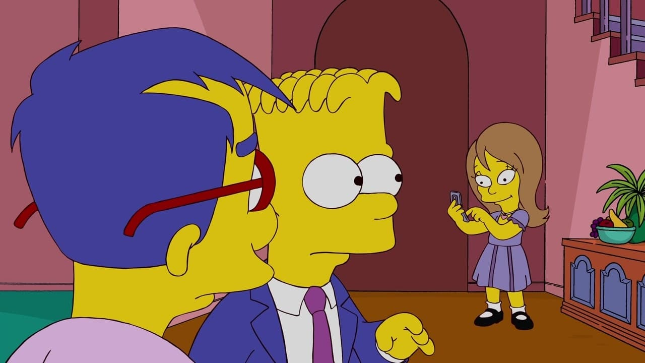 The Simpsons Season 20 :Episode 17  The Good, the Sad and the Drugly