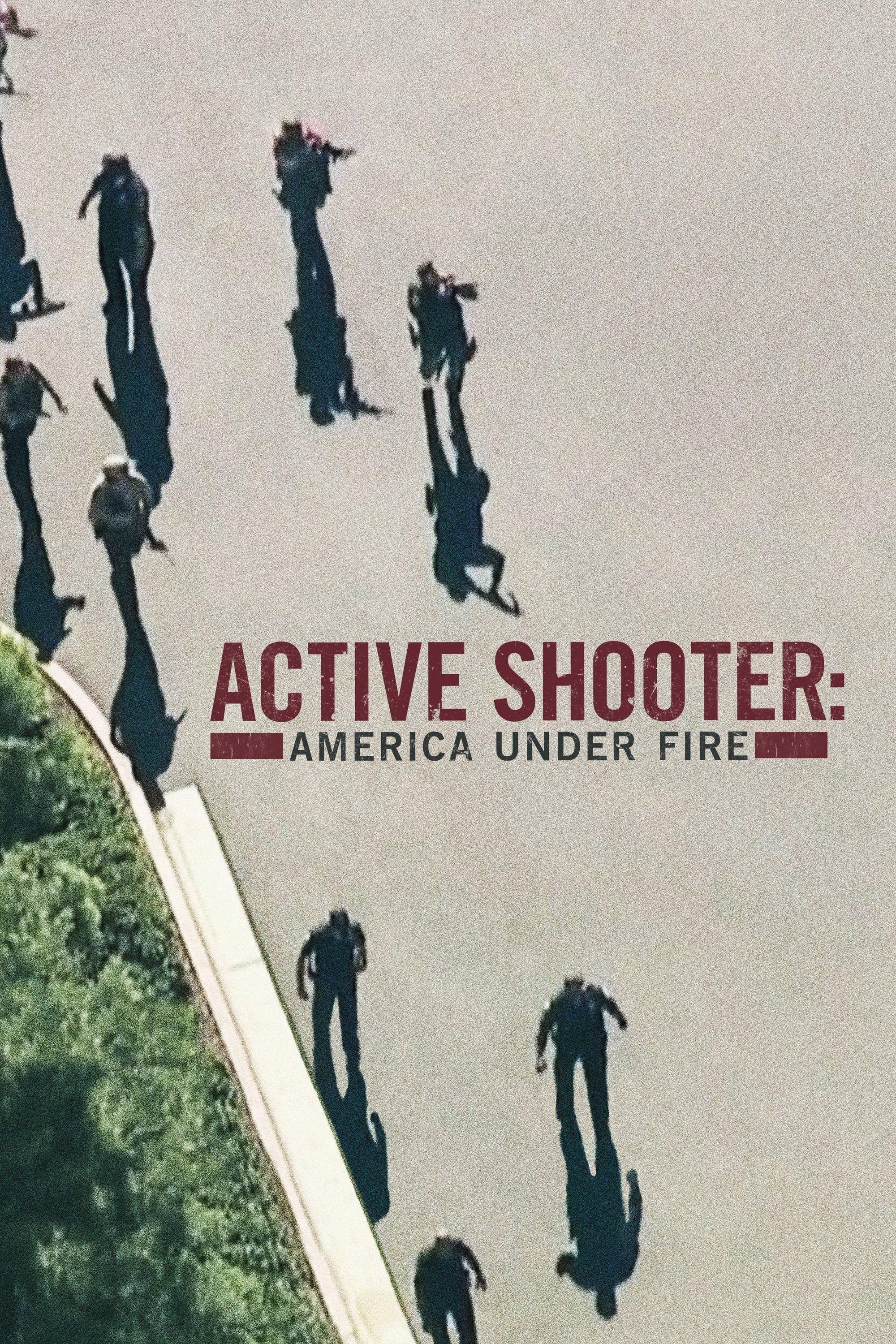 Active Shooter: America Under Fire (2017)