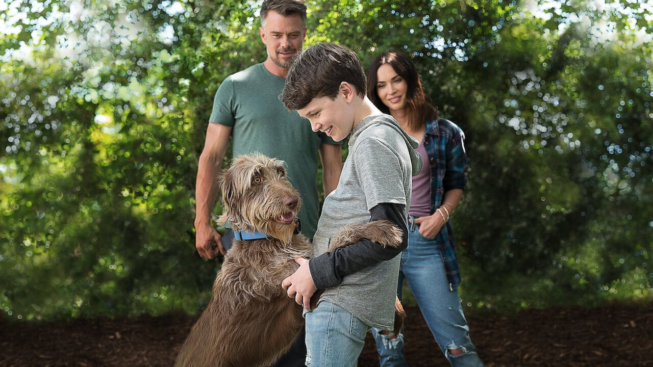 Watch Think Like a Dog (2020) Full Movie Online Free | Stream Free Movies & TV Shows