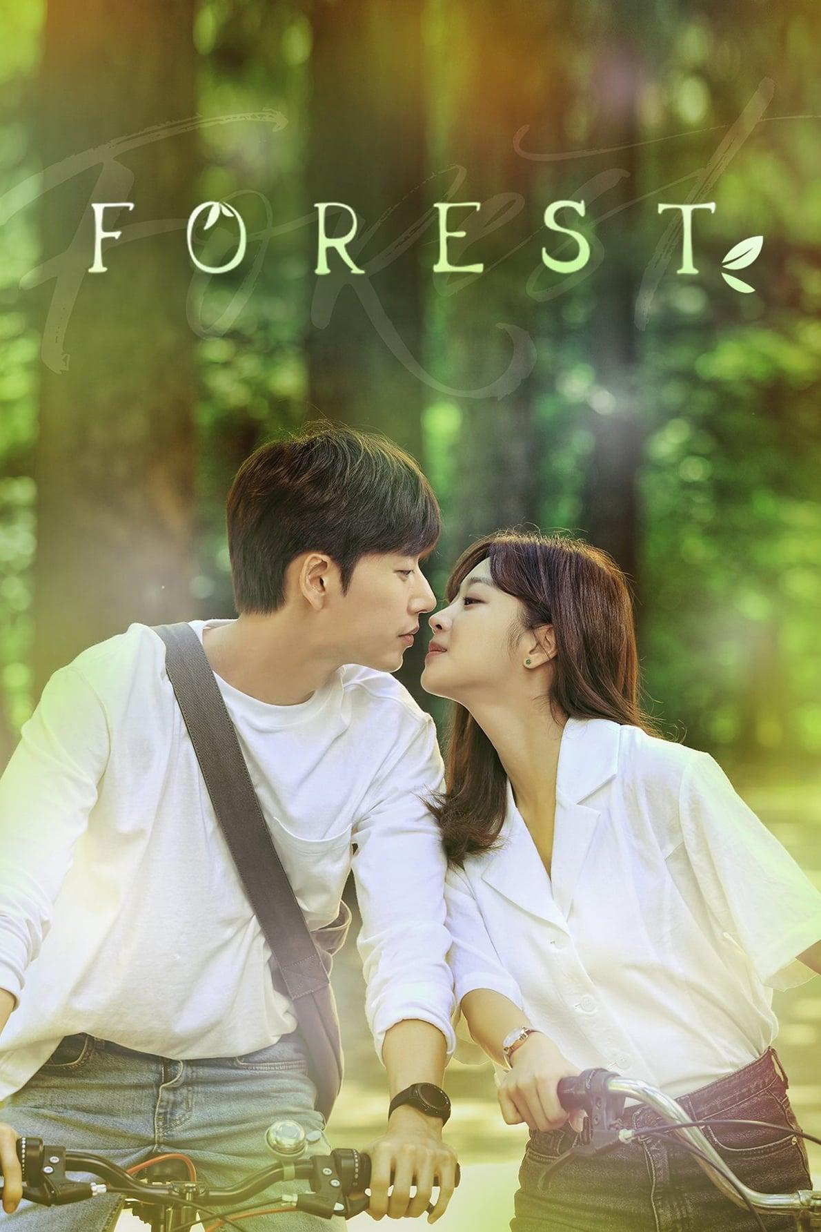 포레스트 TV Shows About Forest