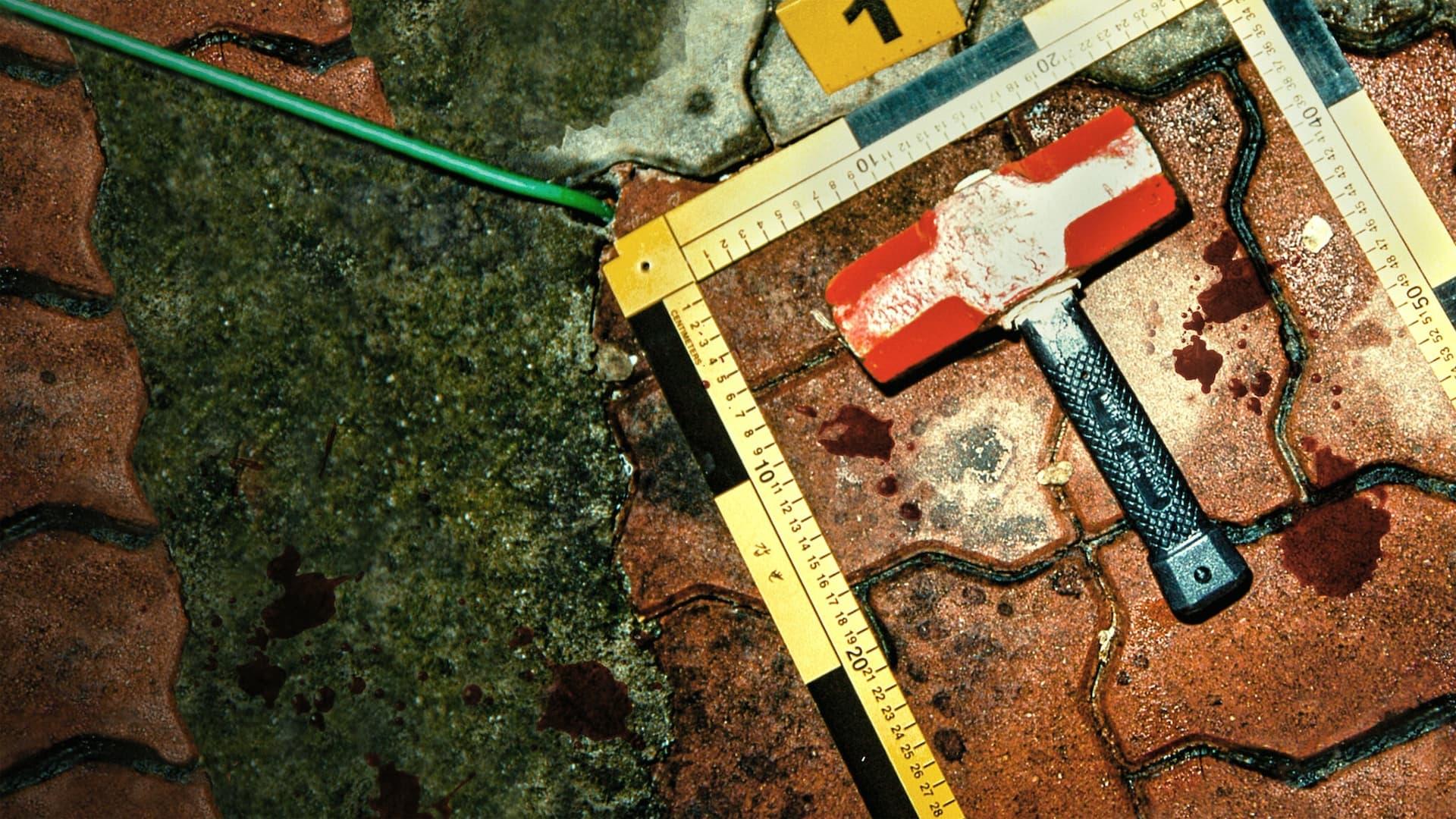 Descargar El asesino del impermeable: A la caza de un depredador en Corea en torrent