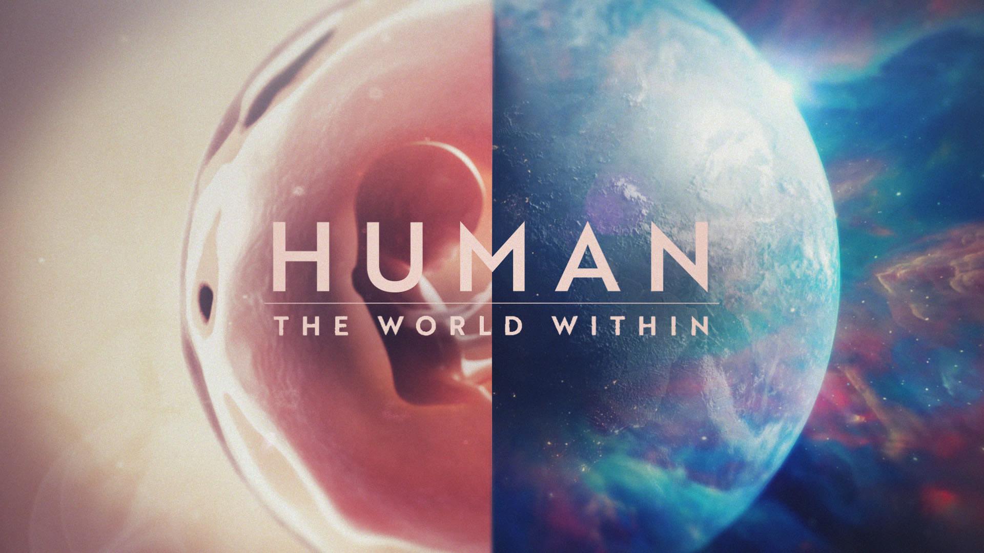 Cuerpo humano: Un mundo entrañable