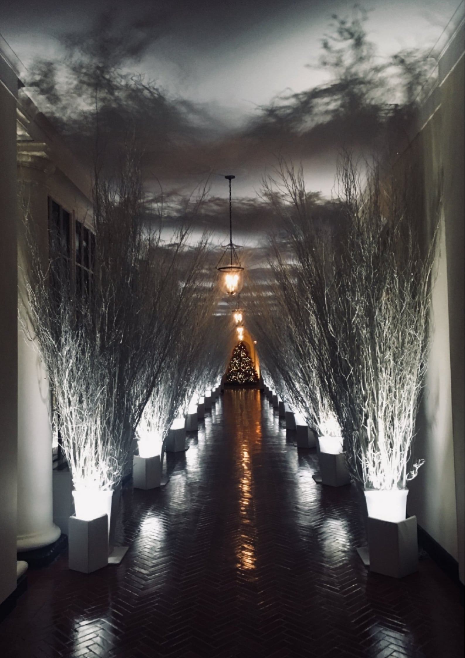 Ver 2017 Holiday Decorations at the White House Online HD Español ()