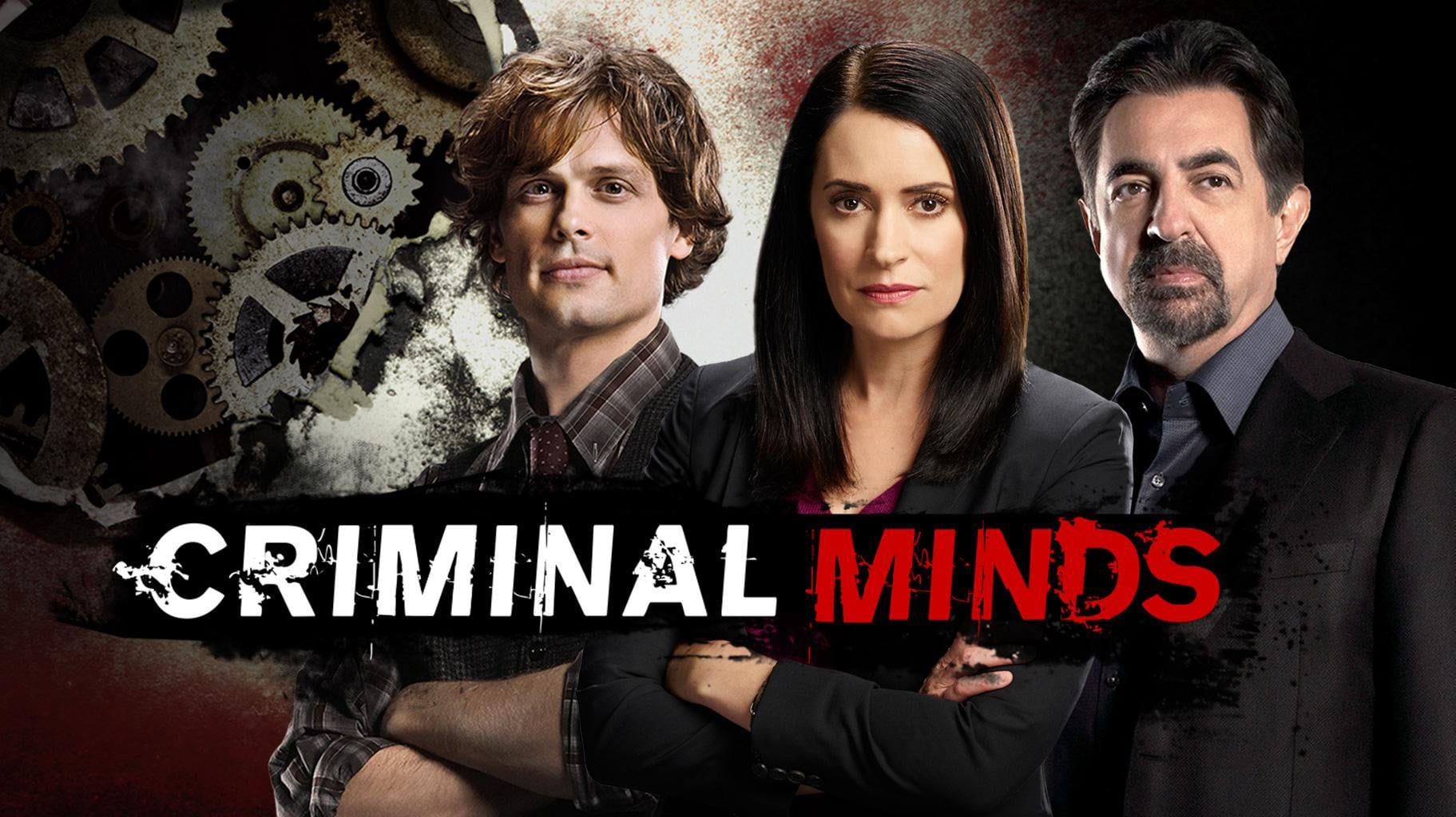 Criminal Minds - Season 13 (1970)