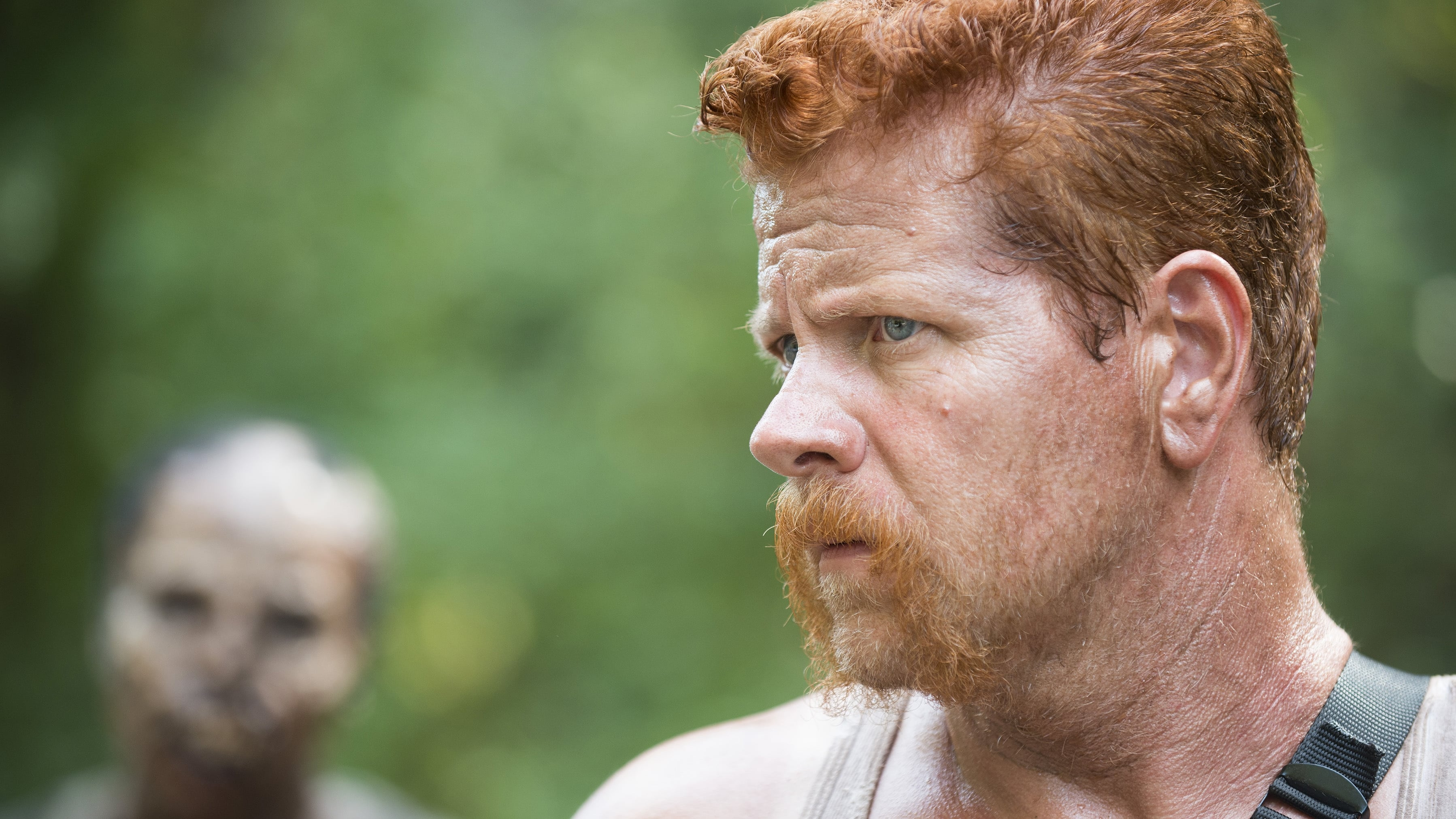 The Walking Dead Season 5 :Episode 11  The Distance
