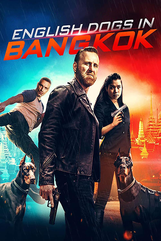 English Dogs in Bangkok (2020)