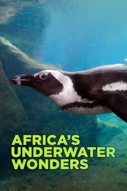 Africa's Underwater Wonders (2016)