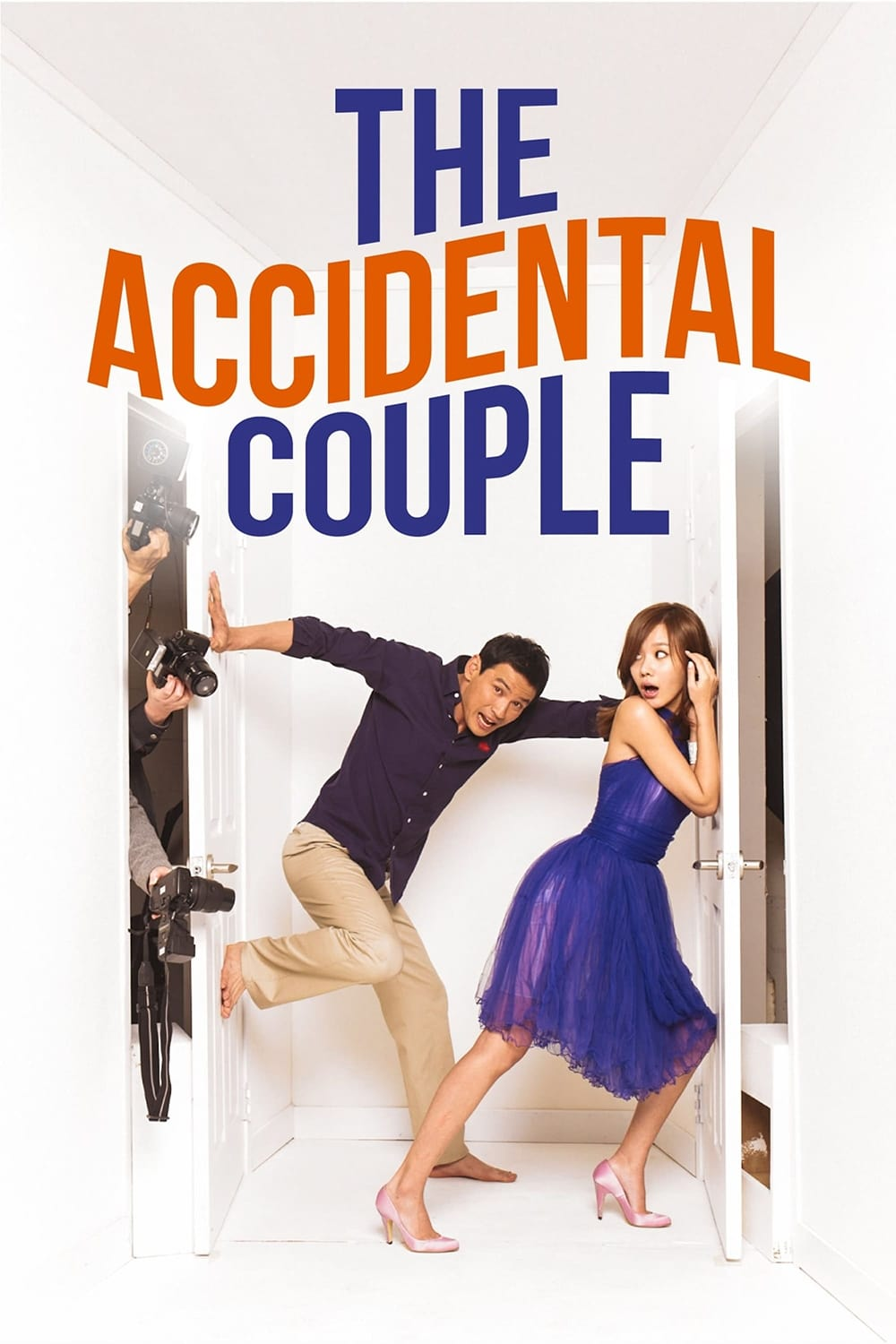 The Accidental Couple (2009)
