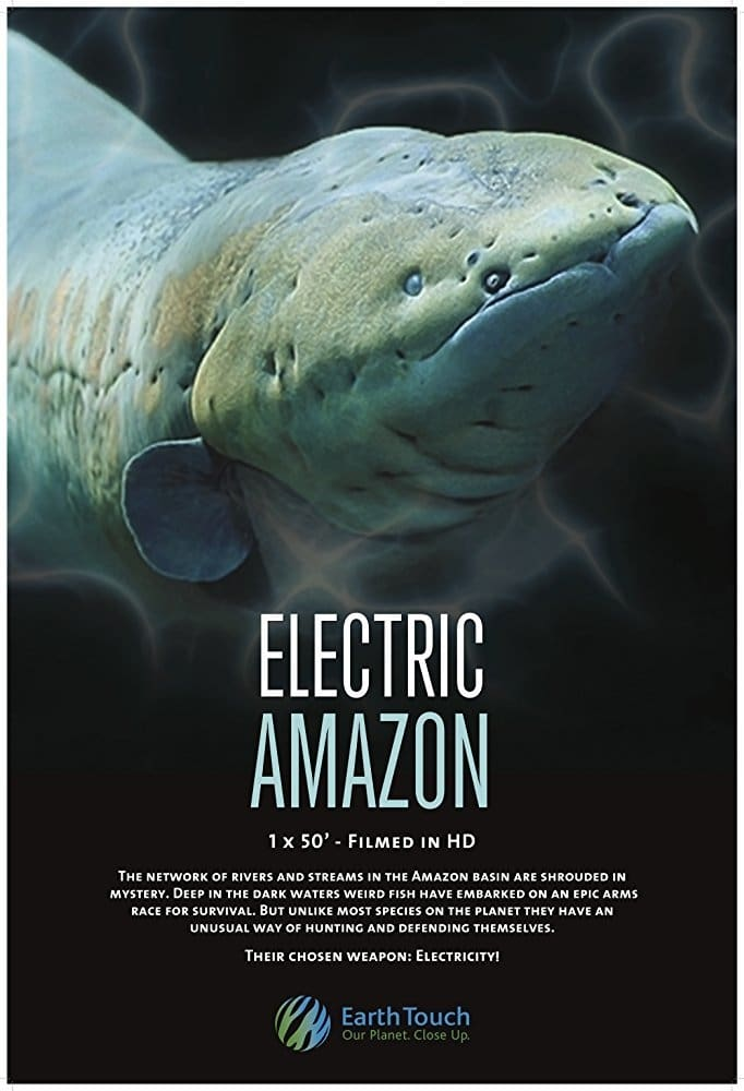 Electric Amazon (2015)