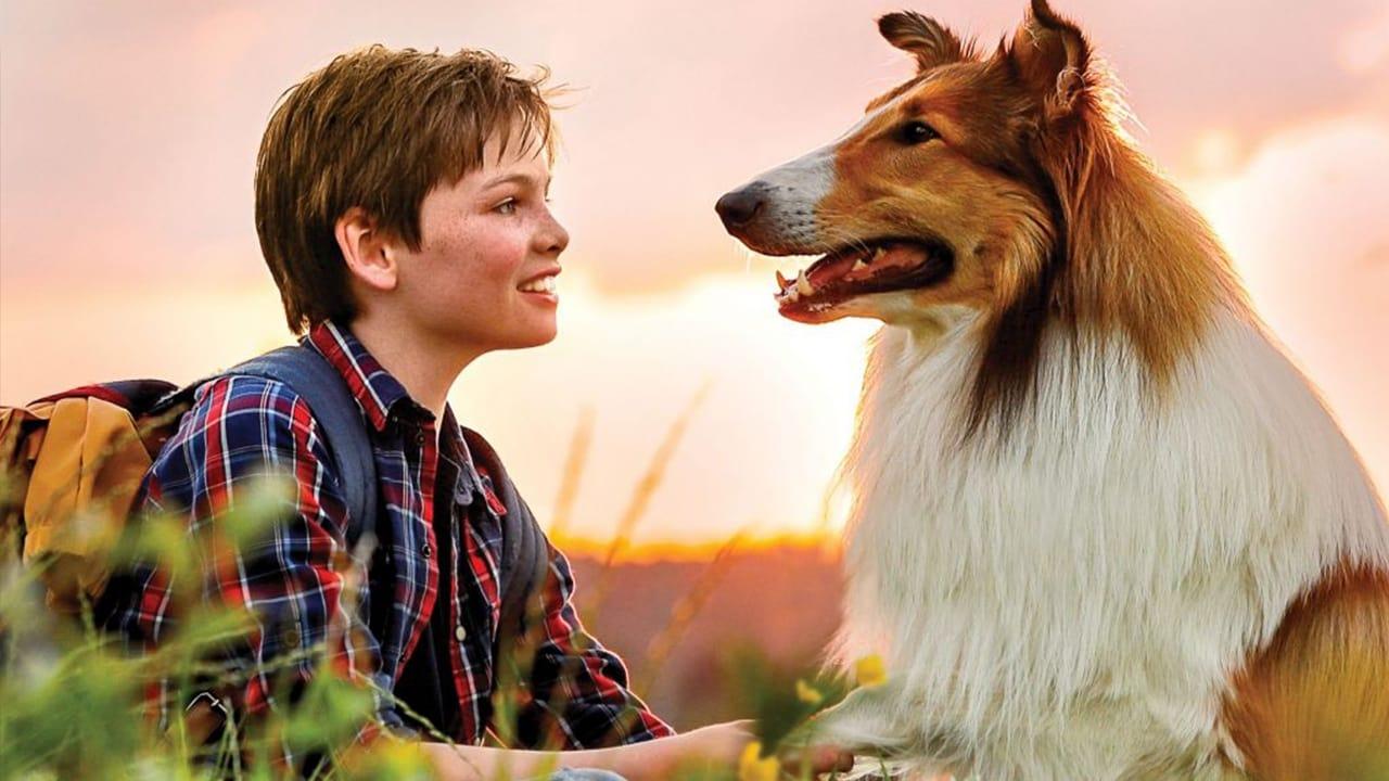 Lassie hazatér (2020)