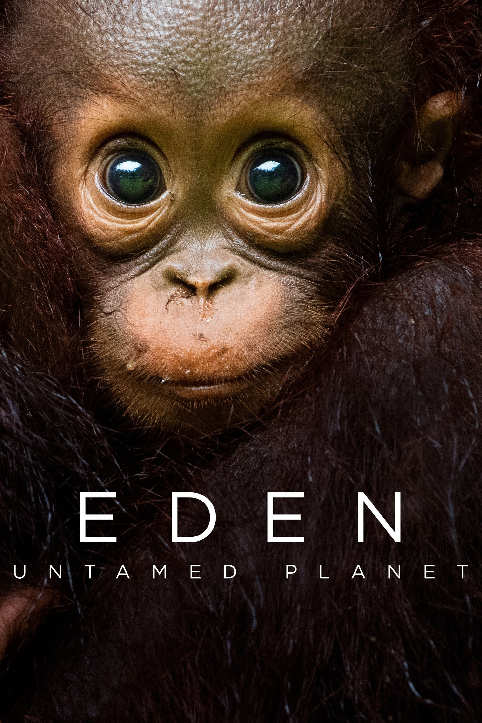 Eden: Untamed Planet TV Shows About Nature Documentary