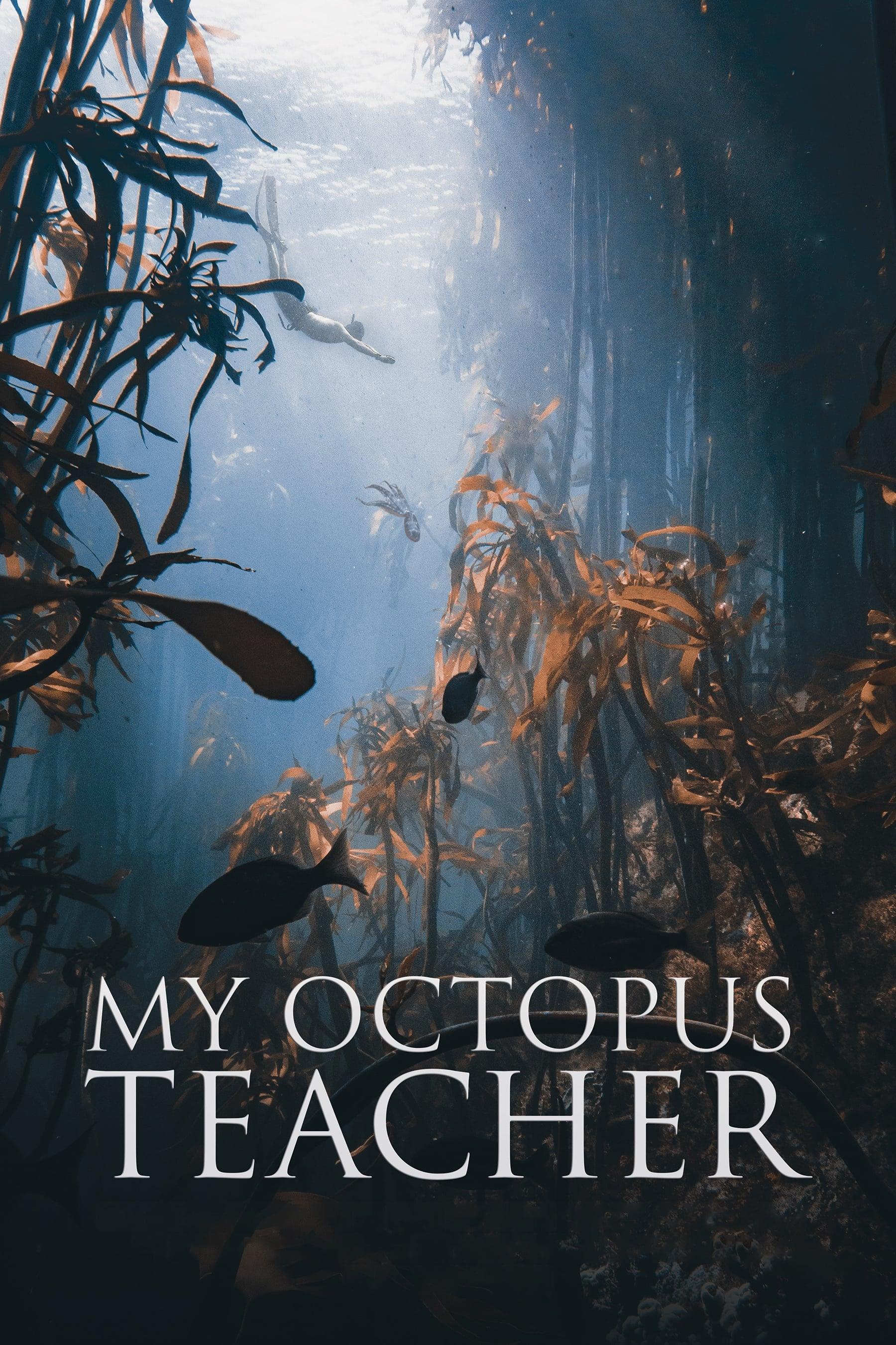 Моят учител октоподът