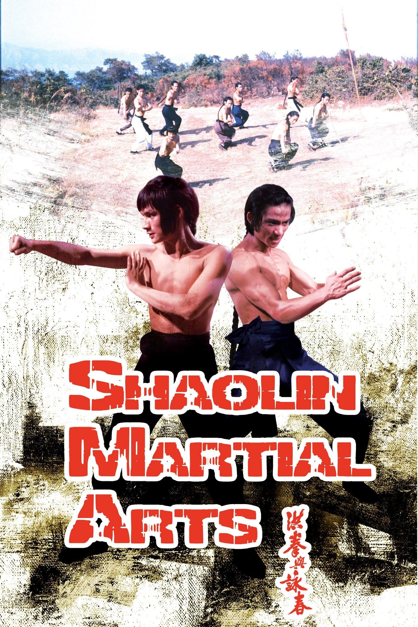 As Artes Marciais de Shaolin Dublado