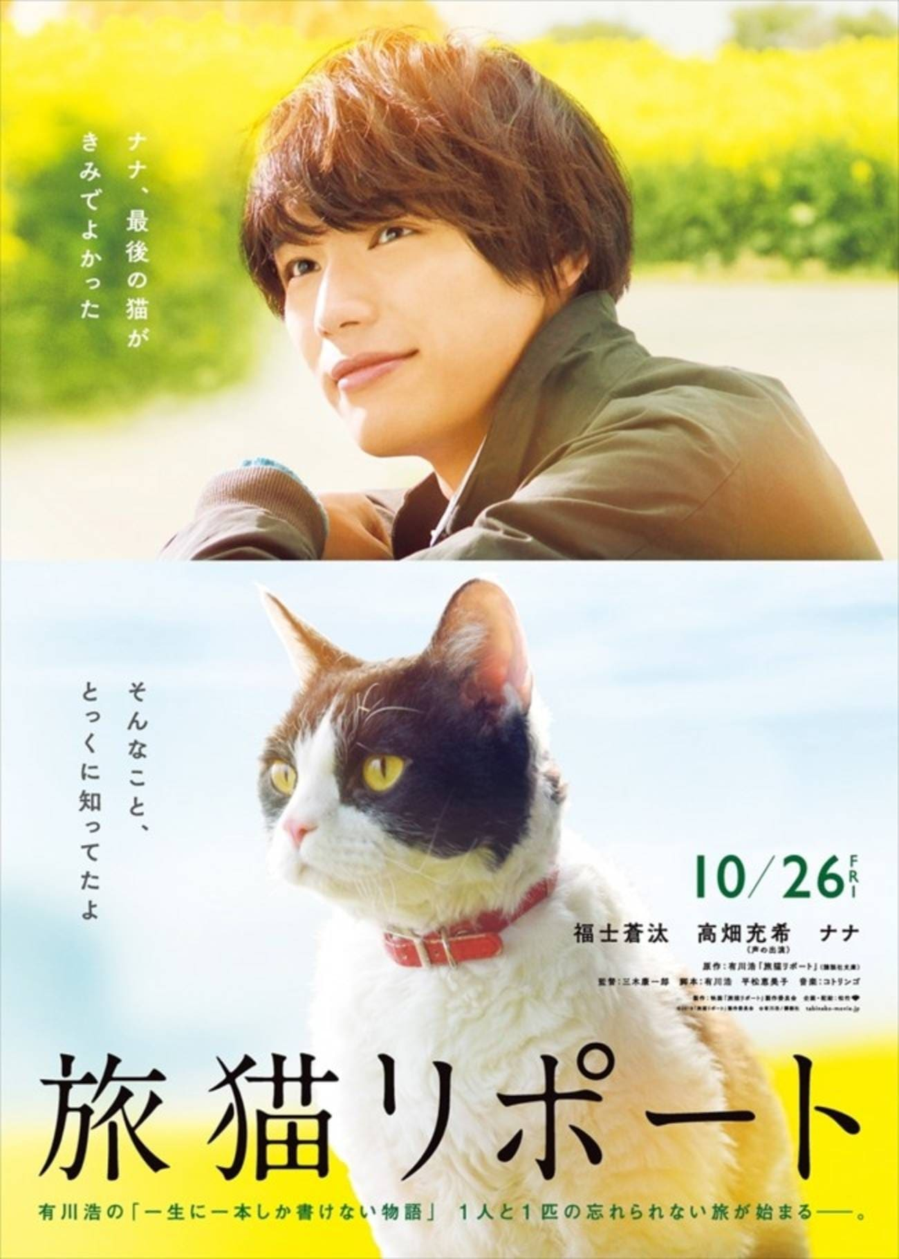 Ver The Travelling Cat Chronicles Online HD Español ()