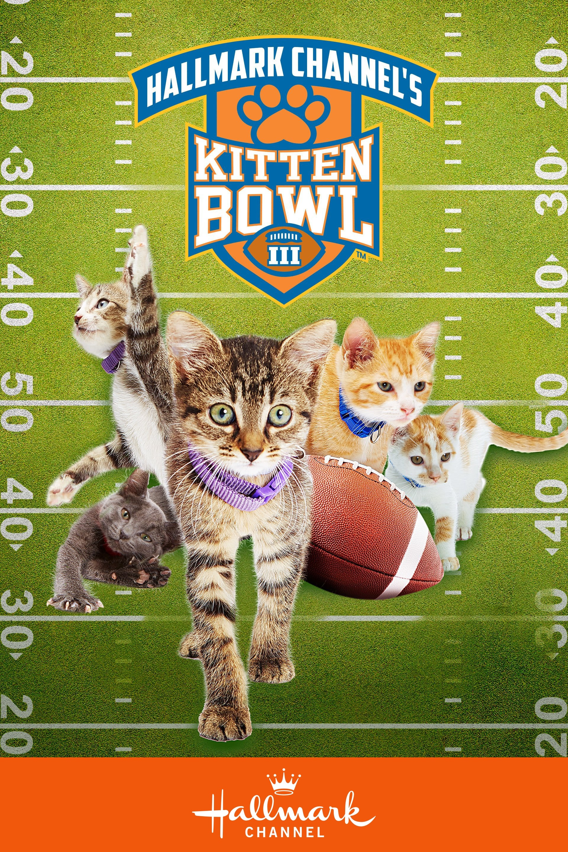 Kitten Bowl III (2016)