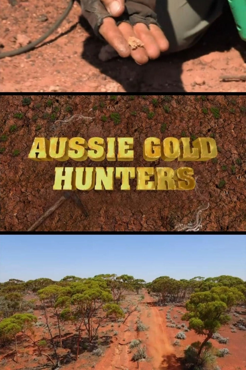 Aussie Gold Hunters (2016)