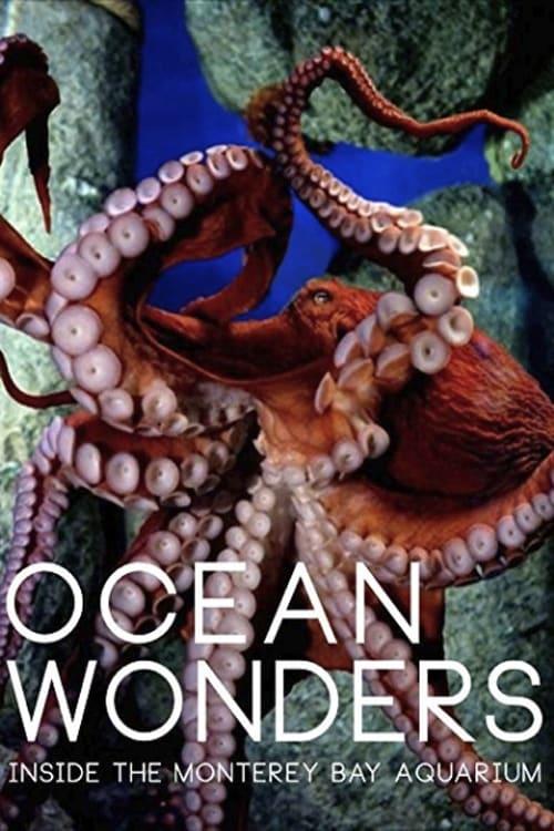 Ocean Wonders - Inside the Monterey Bay Aquarium