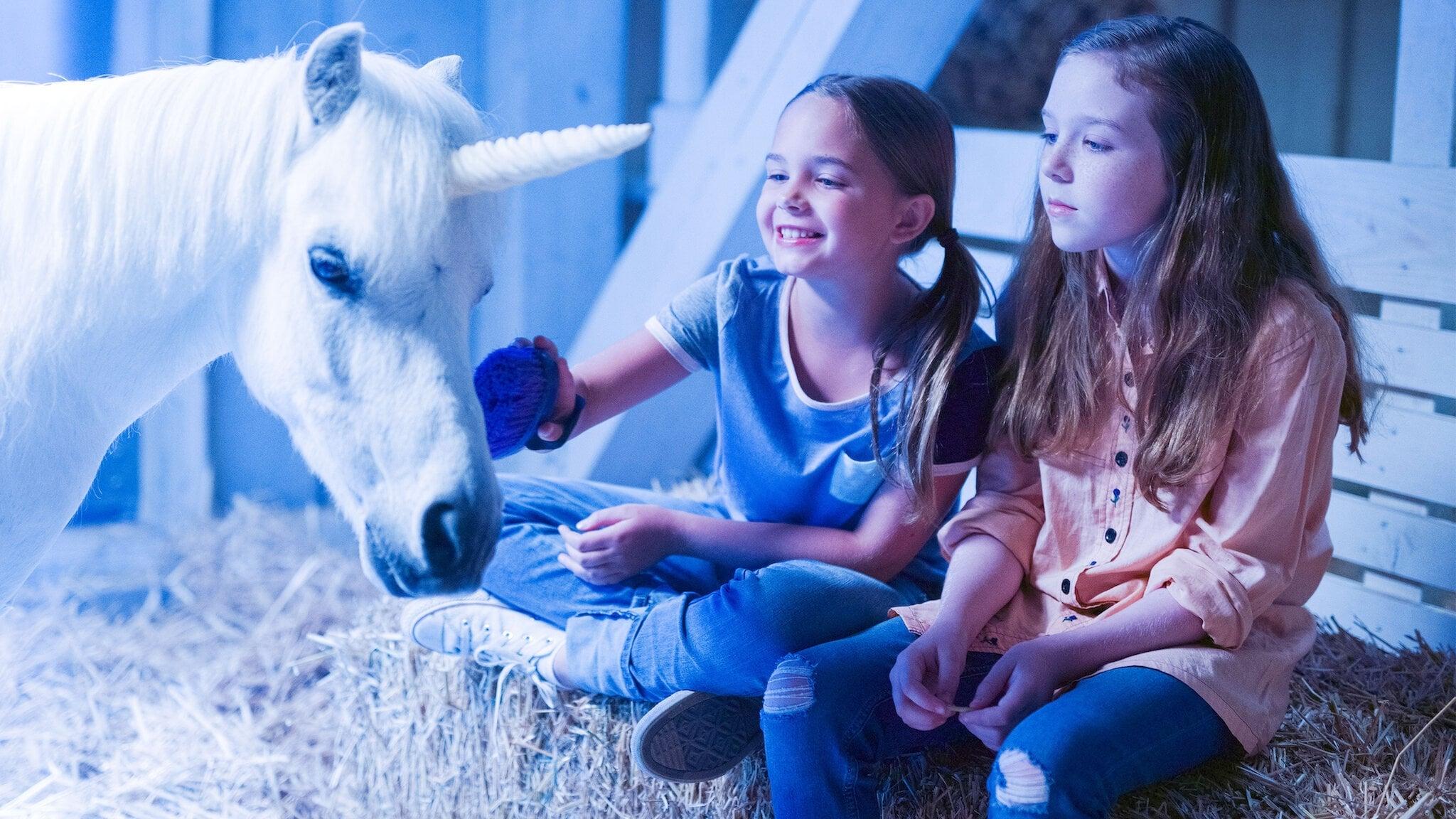 Wish Upon a Unicorn (2020) Stream