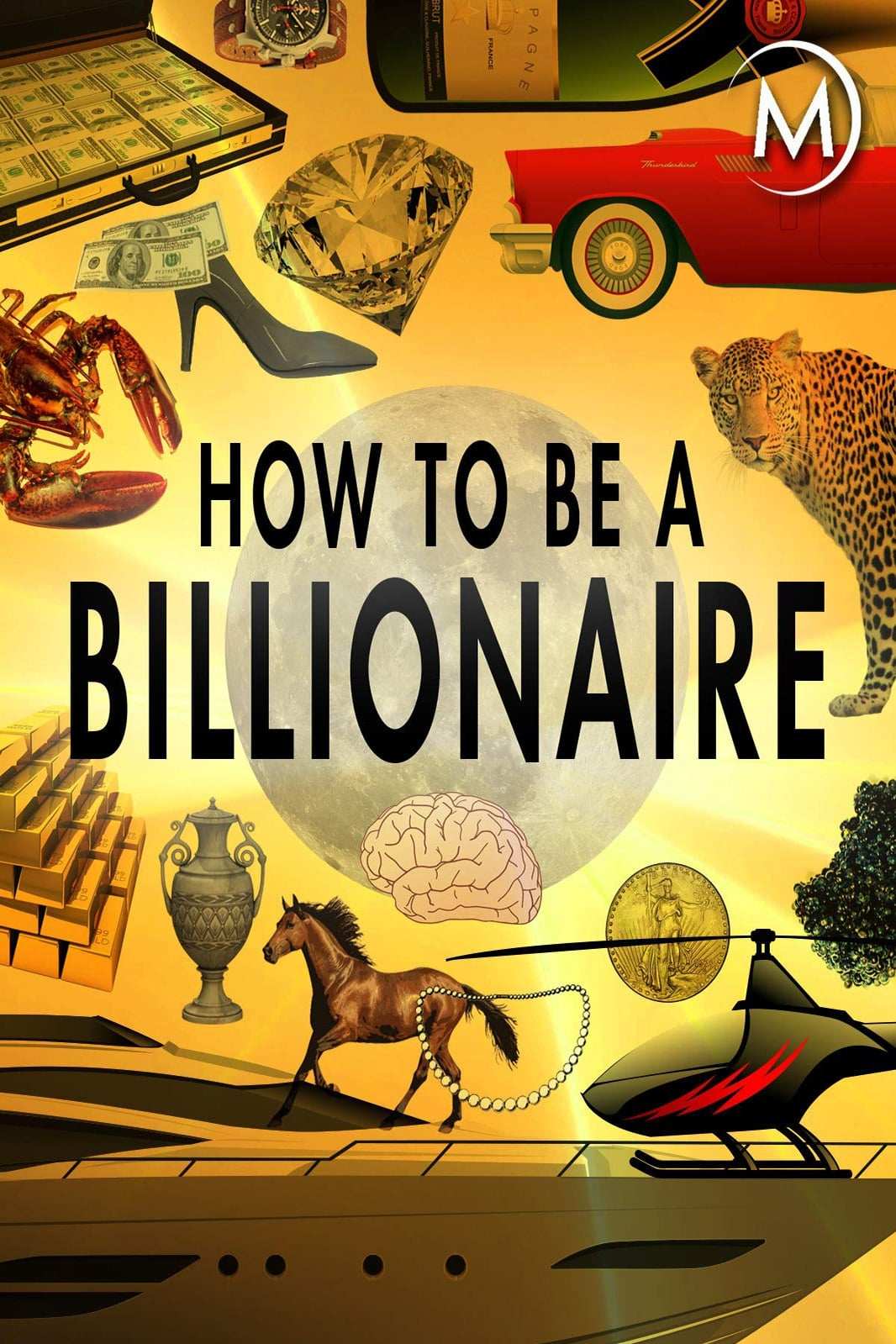 How to Be a Billionaire (2014)