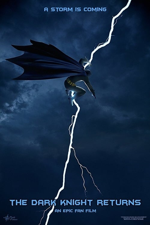 The Dark Knight Returns: An Epic Fan Film