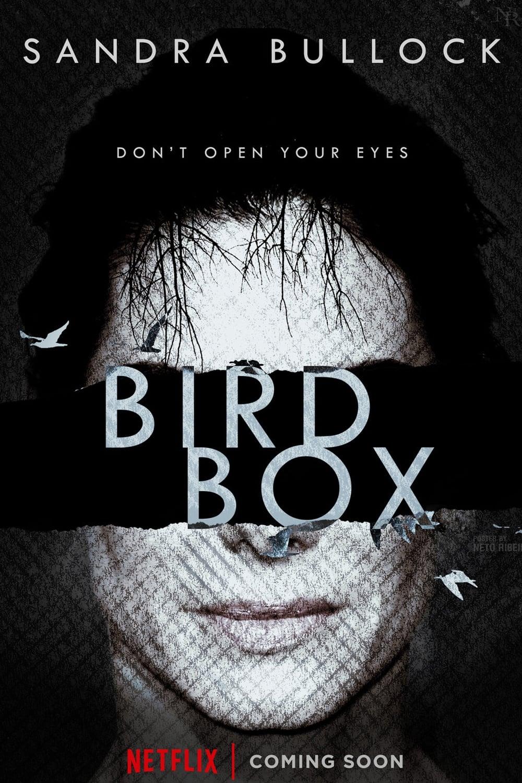 watch Bird Box 2018 online free