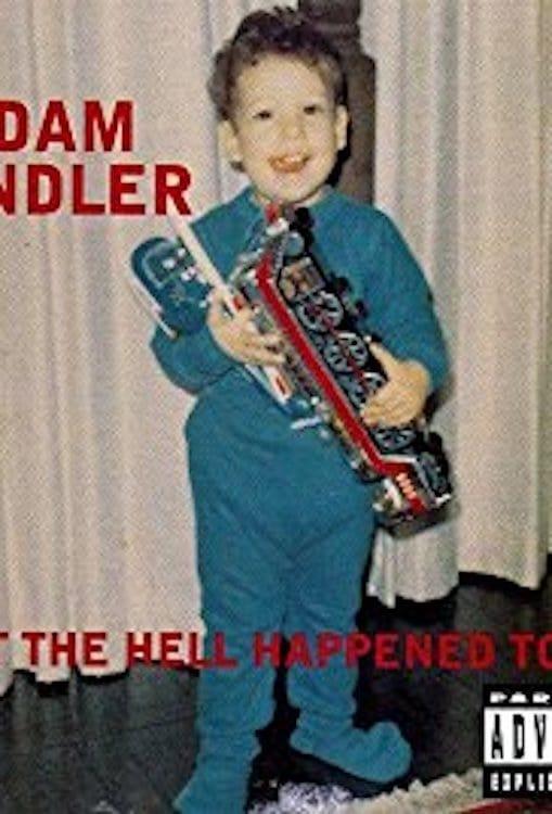 Ver Adam Sandler: What the Hell Happened to Me? Online HD Español (1996)