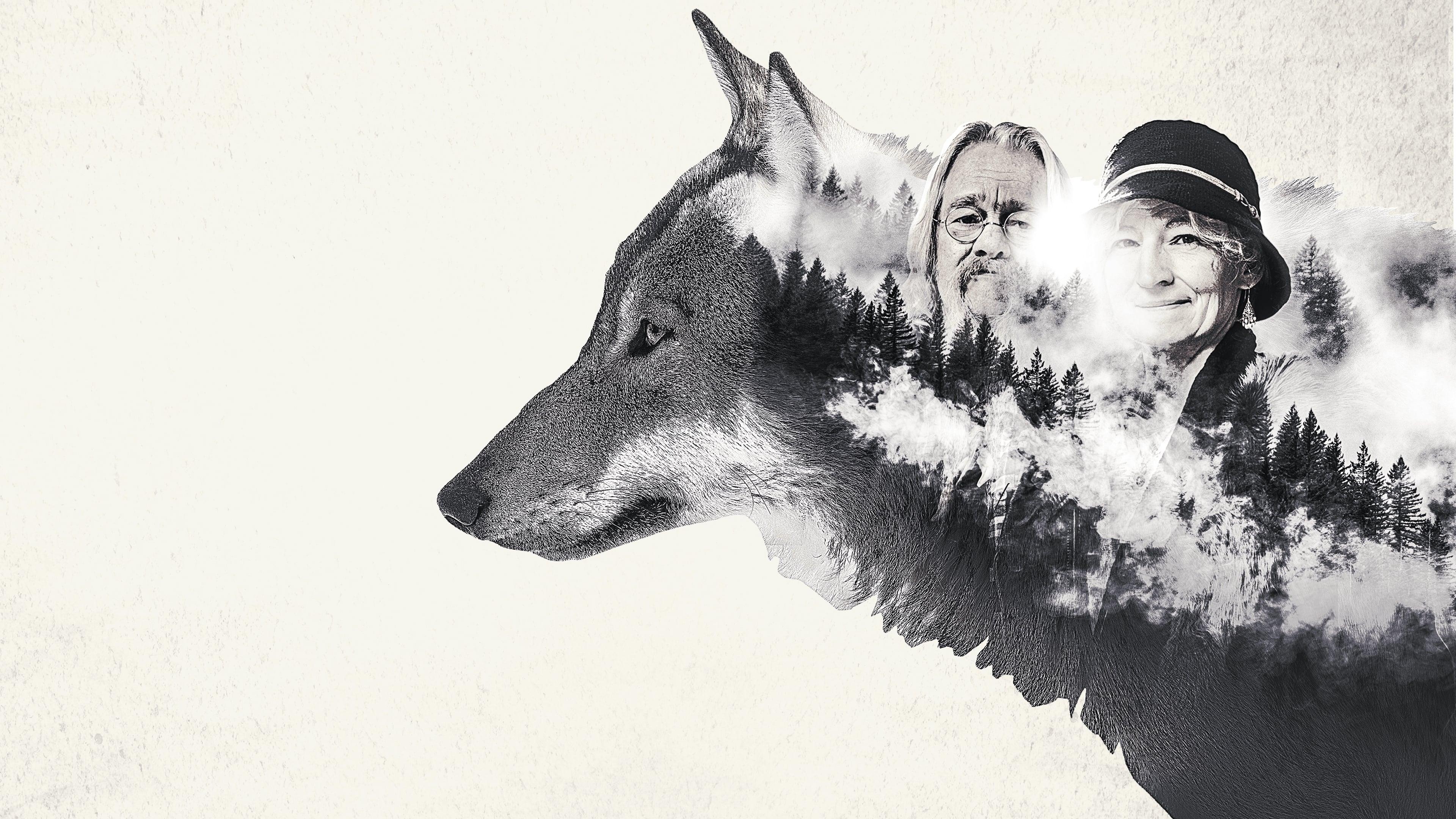 Ver Mi familia vive en Alaska - Temporada 4 Episodios ...