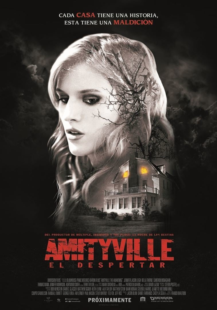 Póster Amityville: El despertar