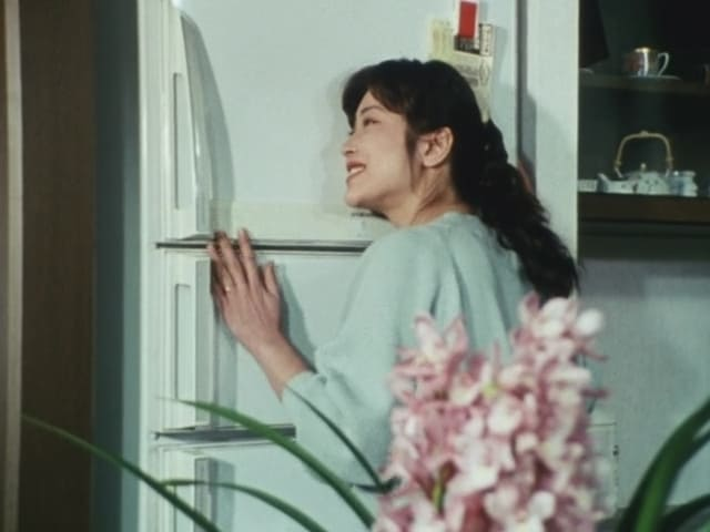 Super Sentai Season 19 :Episode 11  Submit! The Refrigerator of Love