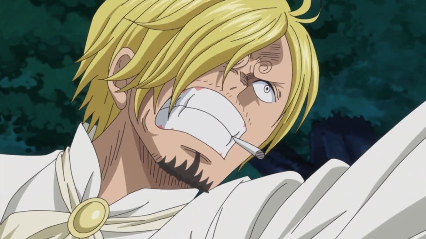One Piece Season 19 :Episode 848  Save the Sunny! Fighting Bravely! Chopper and Brook!