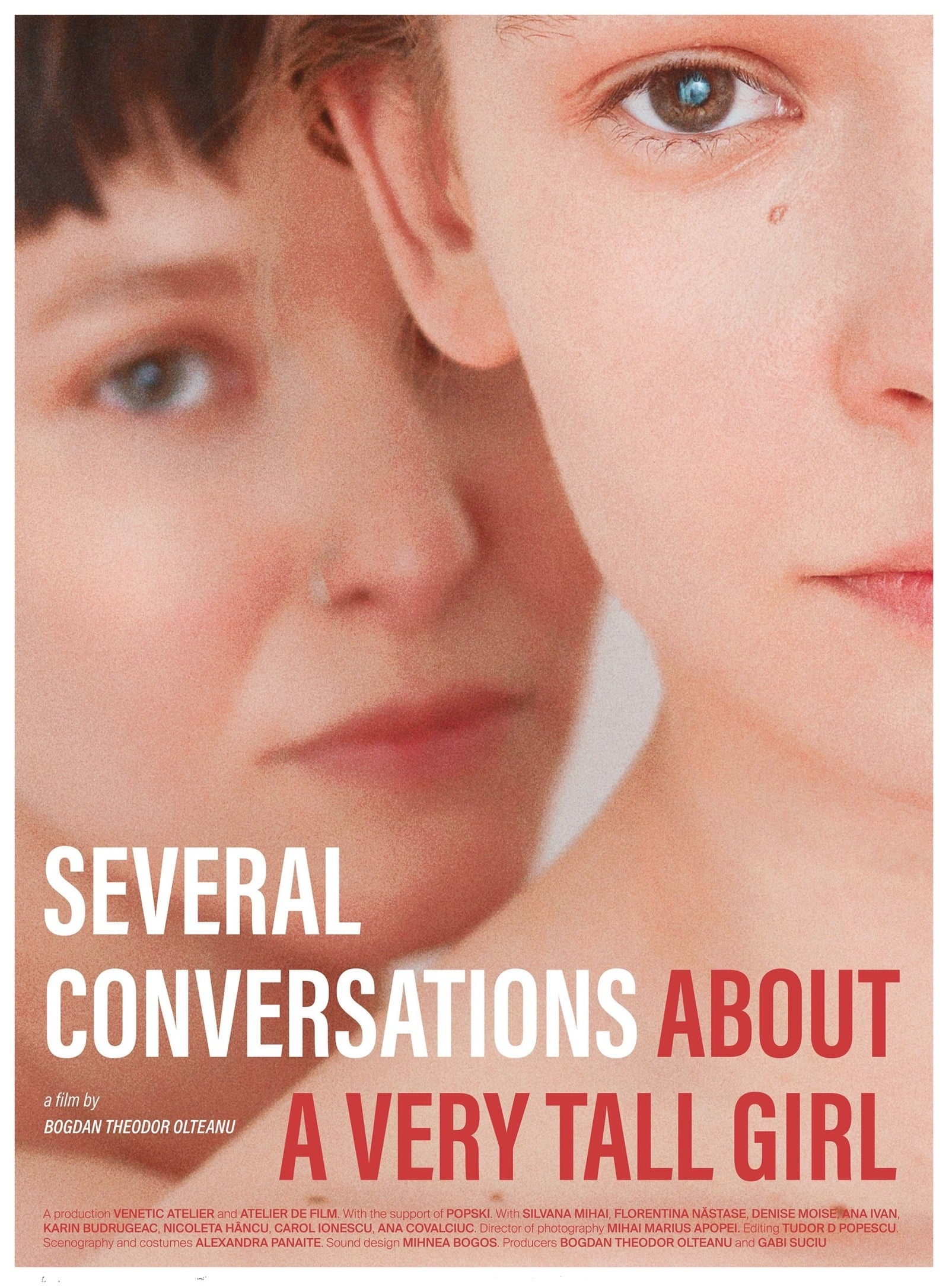 Several Conversations About a Very Tall Girl (2018)